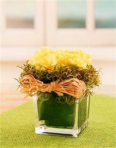 flowers: Mixed Gerberas in a Black Cylinder Vase!