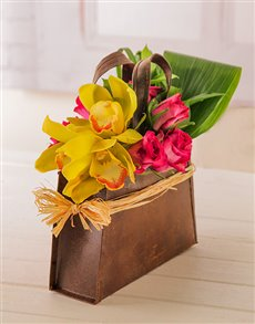 plants: Dazzling Orchid and Roses in a Handbag!