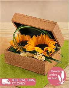flowers: Sunflowers in a Wooden Box!