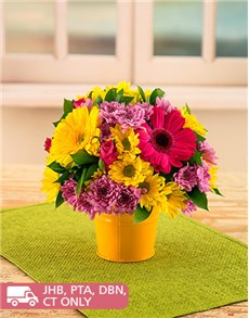 flowers: Colourful and Bright Gerberas and Sprays!