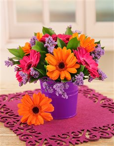 flowers: Orange and Pink Gerberas in a Pail!