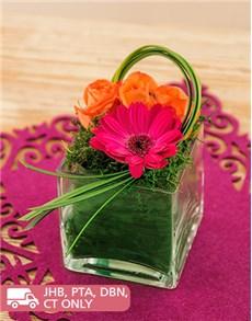 flowers: Gerbera and Roses Petite Arrangement!