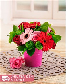 flowers: Mixed Pink and Red Gerberas in a Pail!