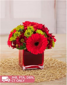 flowers: Red Gerberas & Sprays in a Red Square Vase!
