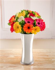 Gifts for Men - Flowers: Mixed Gerberas in a Silver Vase!