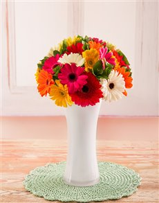 flowers: Mixed Mini Gerberas in White Vase!