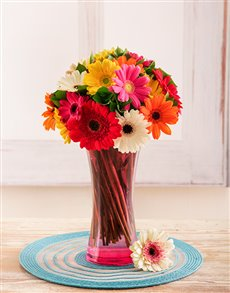 flowers: Mixed Gerberas in a Pink Vase!
