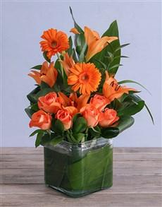 flowers: Orange Duet!