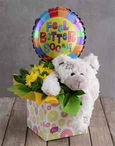 gifts: Get Better Teddy & Flowers!