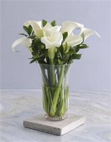 flowers: Ivory Elegance Arum Arrangement!