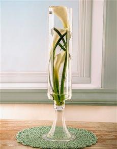 flowers: Serene Simplicity Lily Arrangement!
