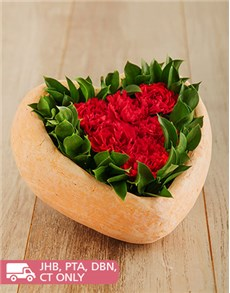 flowers: Red Carnations Love Heart!