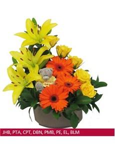 flowers: Welcome Baby Tatty Teddy!