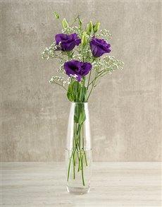 flowers: Elegant Lizzies!