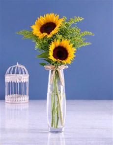 flowers: Sunflowers & Golden Rod!