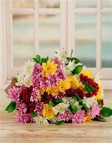 flowers: Daisy, Daisy Delight!