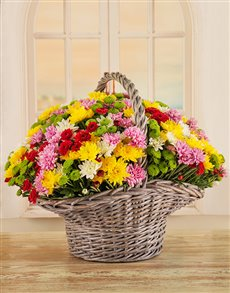 flowers: Daisy Daze Basket!