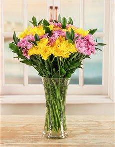 flowers: Sweet as a Daisy!