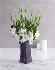 flowers: Peaceful Gladiolus in a Purple Vase!