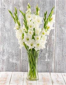 flowers: Sweet Serenity Gladiolus Arrangement!