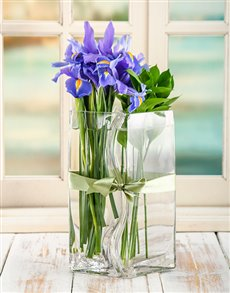 flowers: Iris Lovers Vase!