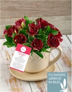 flowers: Abracadabra Roses in a Tea Cup!