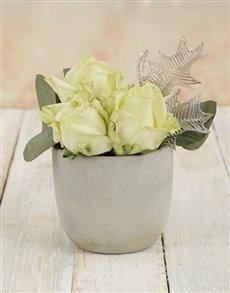 flowers: White Bliss Rose Pot!