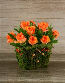 flowers: Orange Roses in Moss Basket!