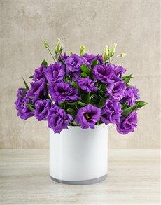 flowers: Vibrant Purple Lisianthus Vase!