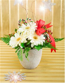 flowers: Christmas Table Arrangement!