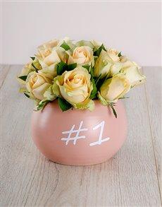 flowers: Cream Roses in Ceramic 1 Pot!