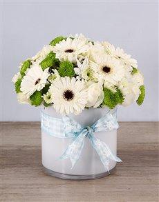 flowers: Baby Boy Flowers In Cylinder Vase!