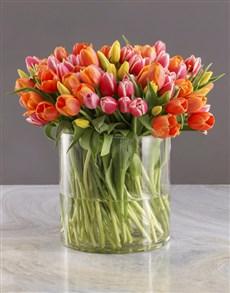flowers: Hundred in One Tulips Arrangement!