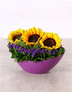 flowers: Sunshine in a Purple Boat Vase!