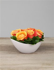 flowers: White Boat Vase with Cherry Brandy Roses!