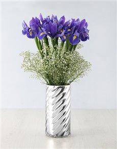 flowers: Iris Beauty in a Vase!