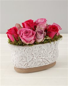 flowers: Lilac and Pink Roses in Glazed Oval Pot!