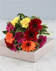 Picture of Glorious Gerberas!