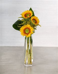 flowers: Green Button Sunflowers in Bullet Vase!