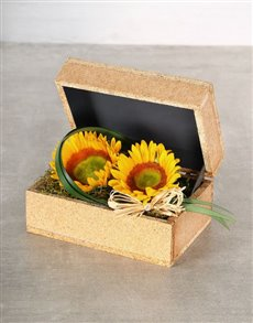 flowers: Green Button Sunflowers in a Box!