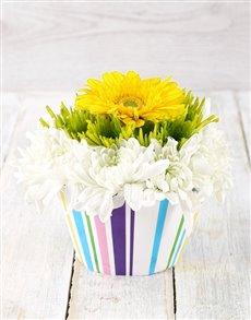 flowers: Sunny Gerbera and Spray Cupcake Arrangement!