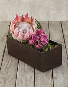 flowers: Rustic King Protea & Rose Container!