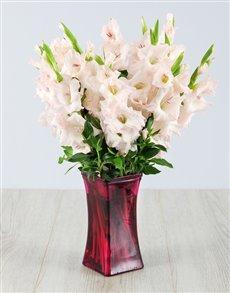 flowers: Light Pink Gladiolus in Red Square Vase!