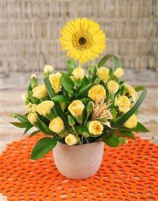 flowers: Gerbera Among Mini Carnations in Petite Vase!