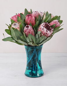 flowers: Mixed Proteas in Blue Cylinder Vase!