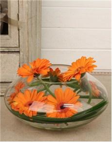 gifts: Modern Mini Gerbera in a Vase!