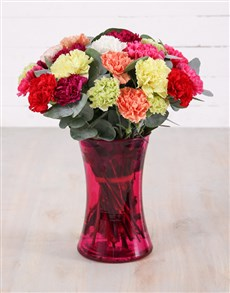 flowers: Mixed Carnations and Gum Leaves in Cylinder Vase!