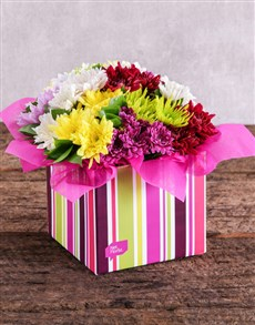flowers: Sprays in a Striped Box!