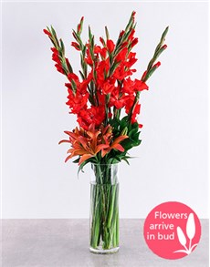 flowers: Red Gladiolus and Asiflorum Lily Vase!