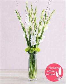 gifts: White Gladiolus Vase!